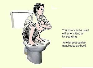 Pedestal squat toilet