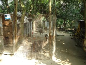 Mumbai Animal Activist blows the whistle on Kolkata Snake Park