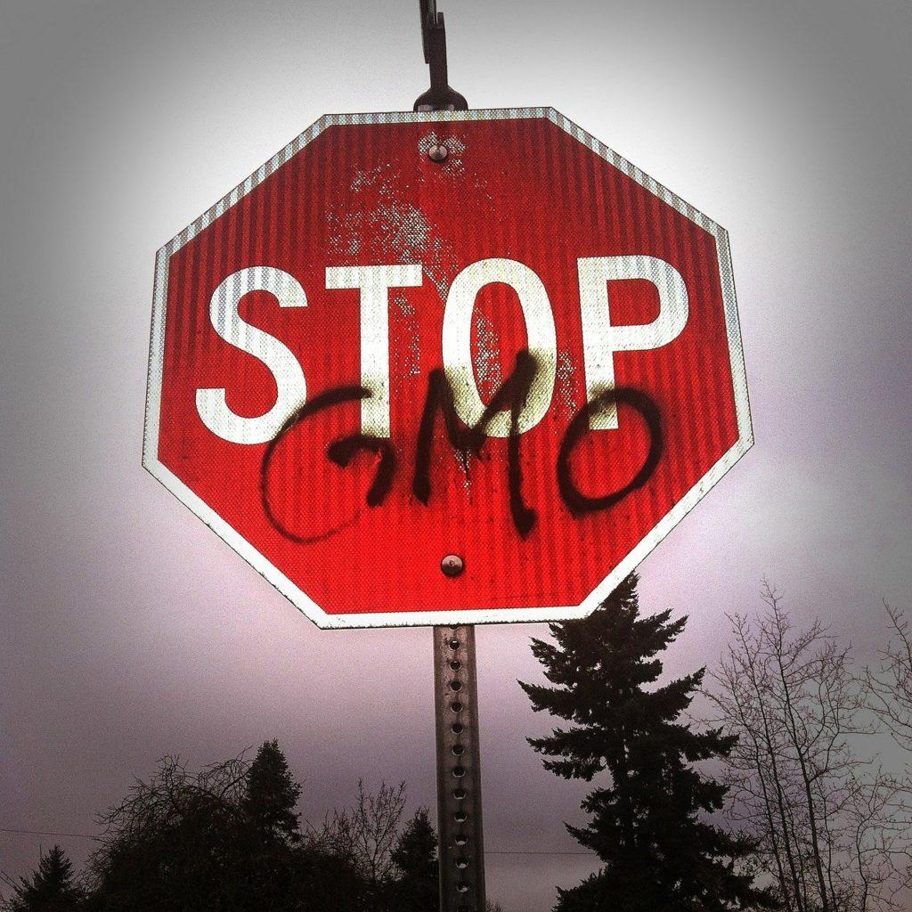 GMOs – STOP. NOW! 1
