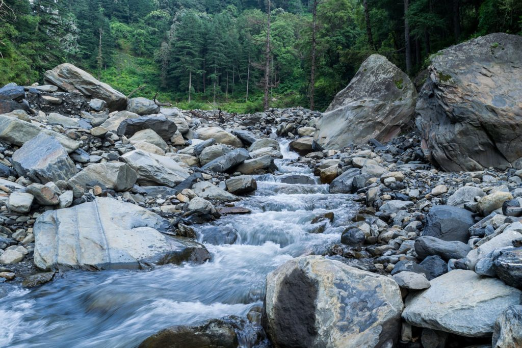 Mountain stream in alpine forest in Himachal Pradesh