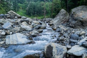 Mountain stream in alpine forest in Himachal Pradesh