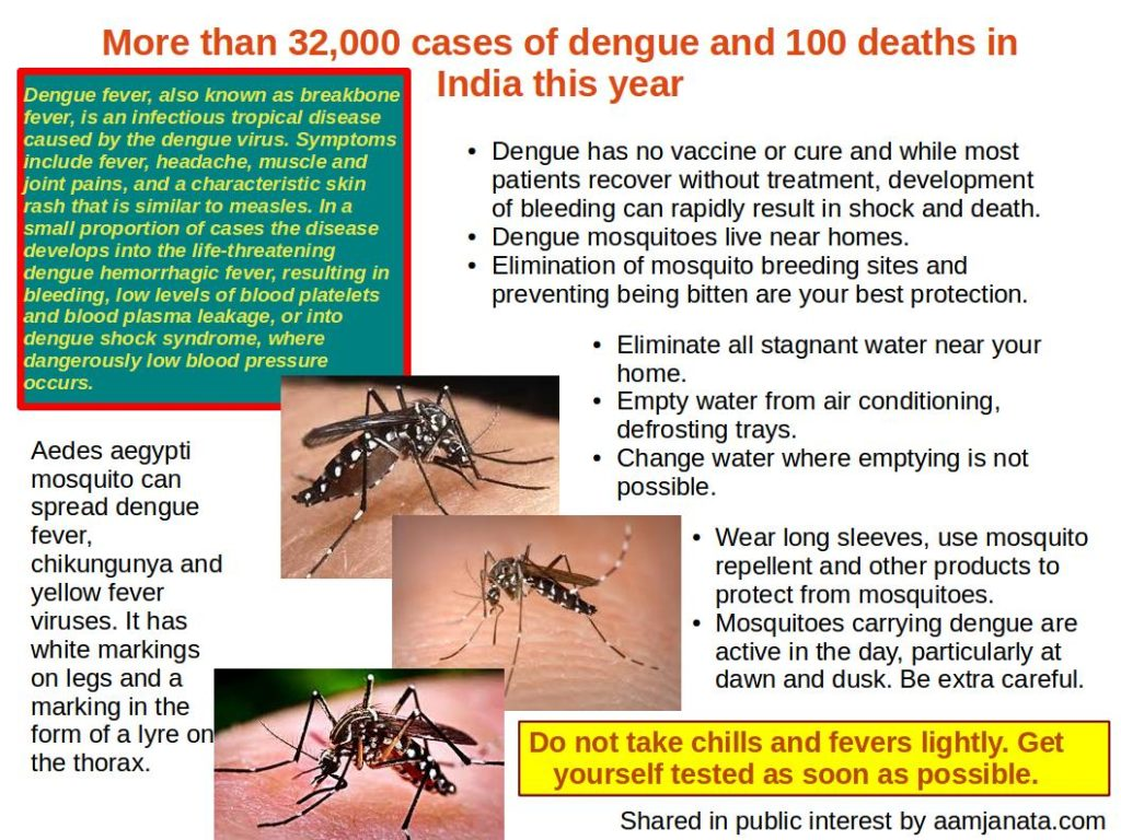 Information on dengue, mosquitoes that spread dengue and prevention