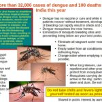Dengue Fever season: Protect yourself