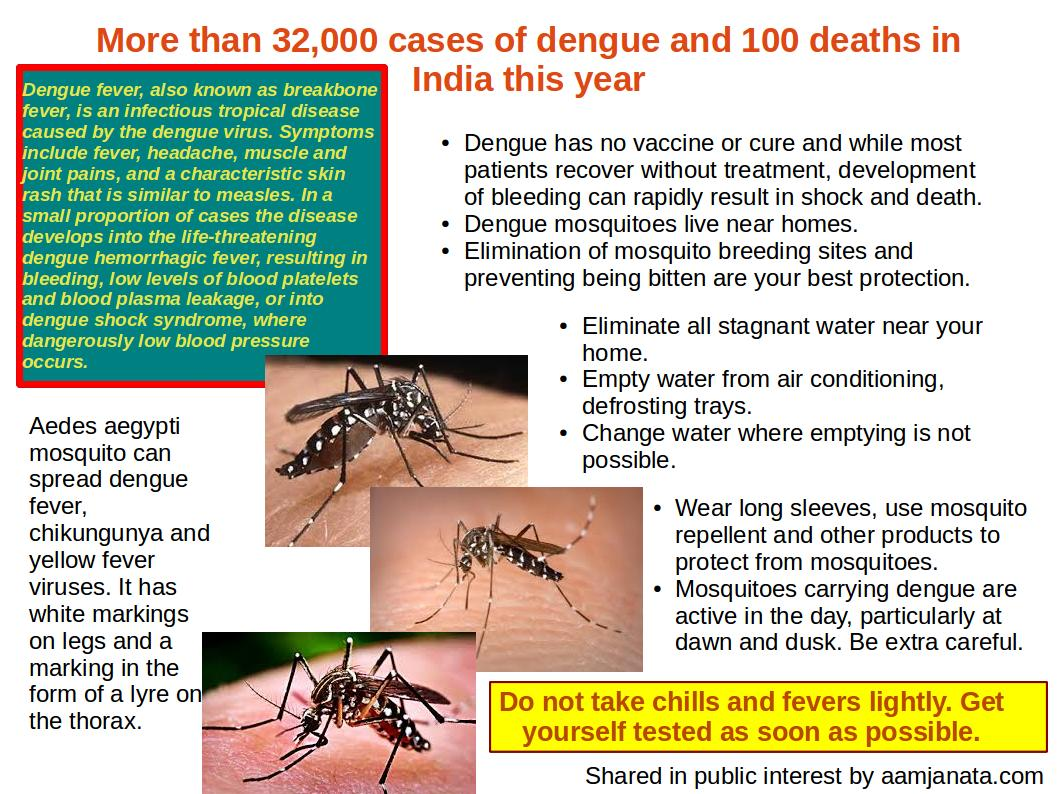 how to prevent from dengue