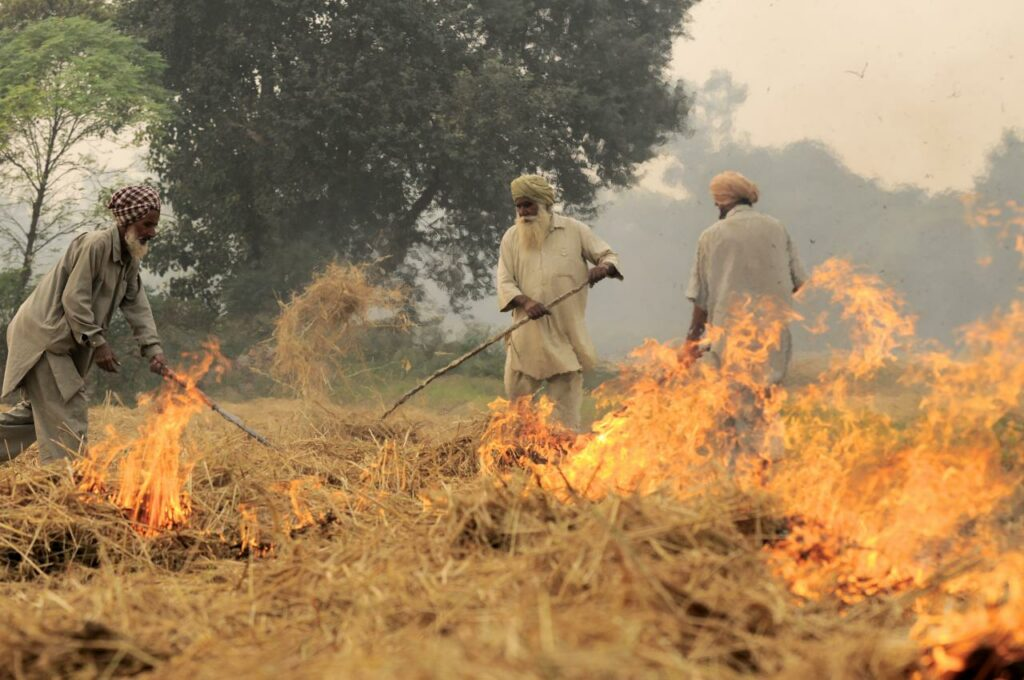 Indian farmers burning stubble
