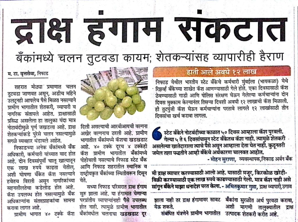 Maharashtra Times report on the impact of demonetisation on grape trade in Niphad, Nashik
