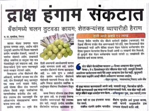 maharashtra-times-grape-season-crisis