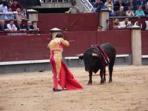 A matador before the final strike at Plaza de Toros Las Ventas, Madrid, Spain 2005