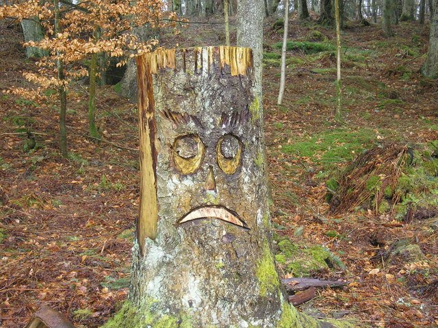 Sad face on tree stump