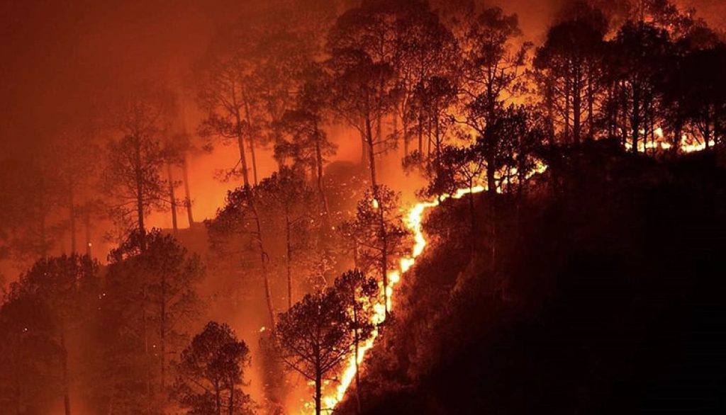 Simlipal Forest Fire